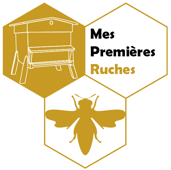 mes premieres ruches
